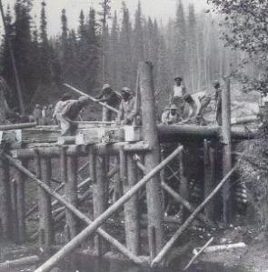 95th Engineer Battalion - Public Domain Image